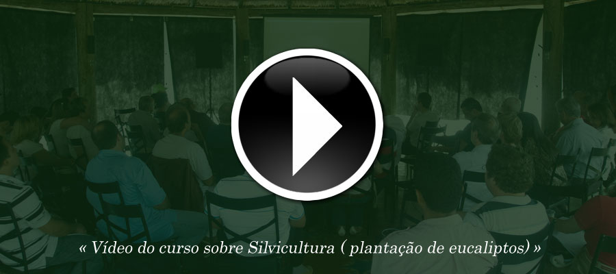 V�deo do curso sobre Sivicultura ( planta��o de eucaliptos)